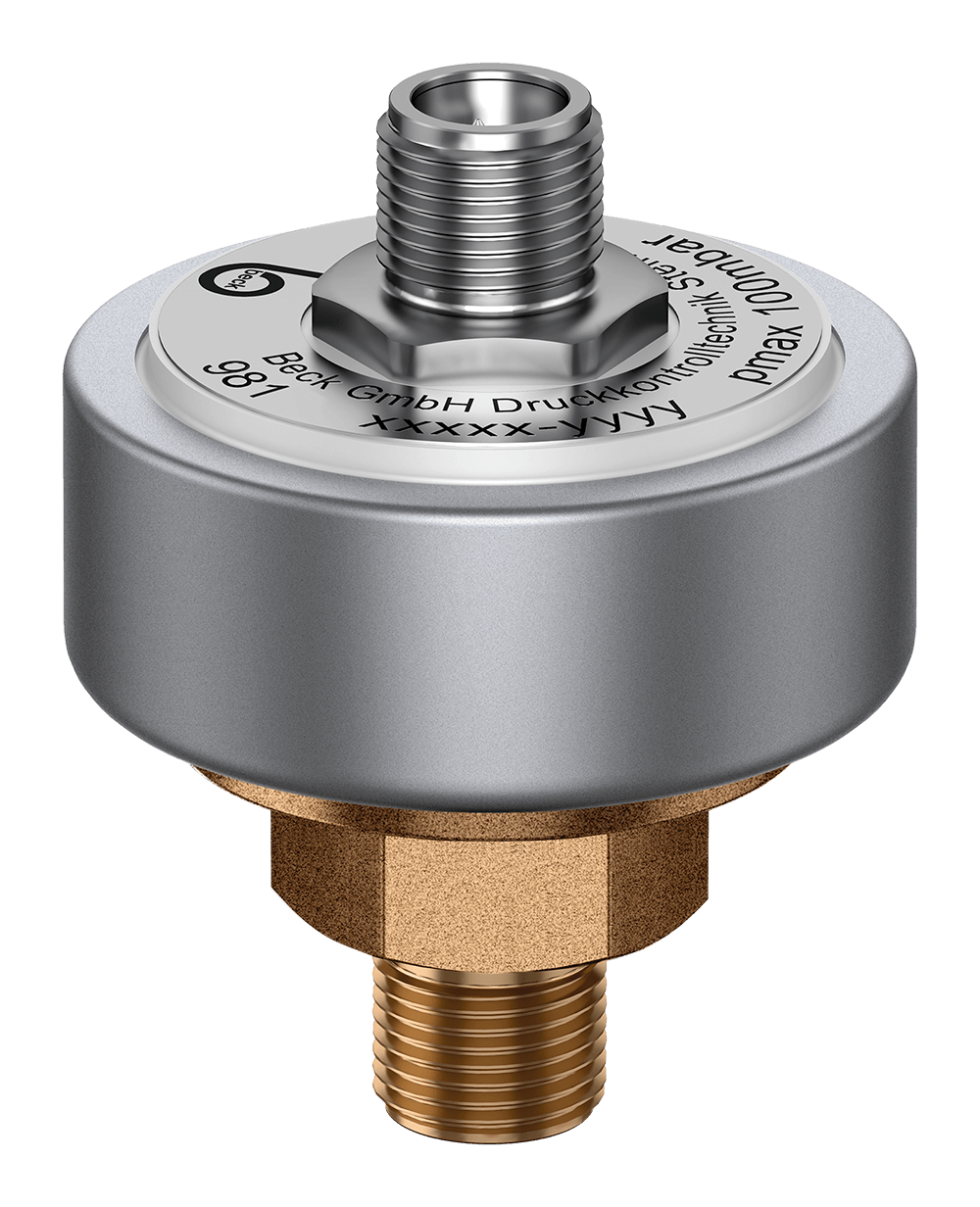 Pressure Transmitter 981 with brass pressure connection